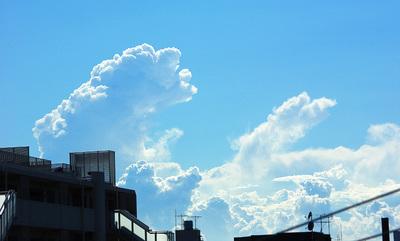 夏雲の写真1